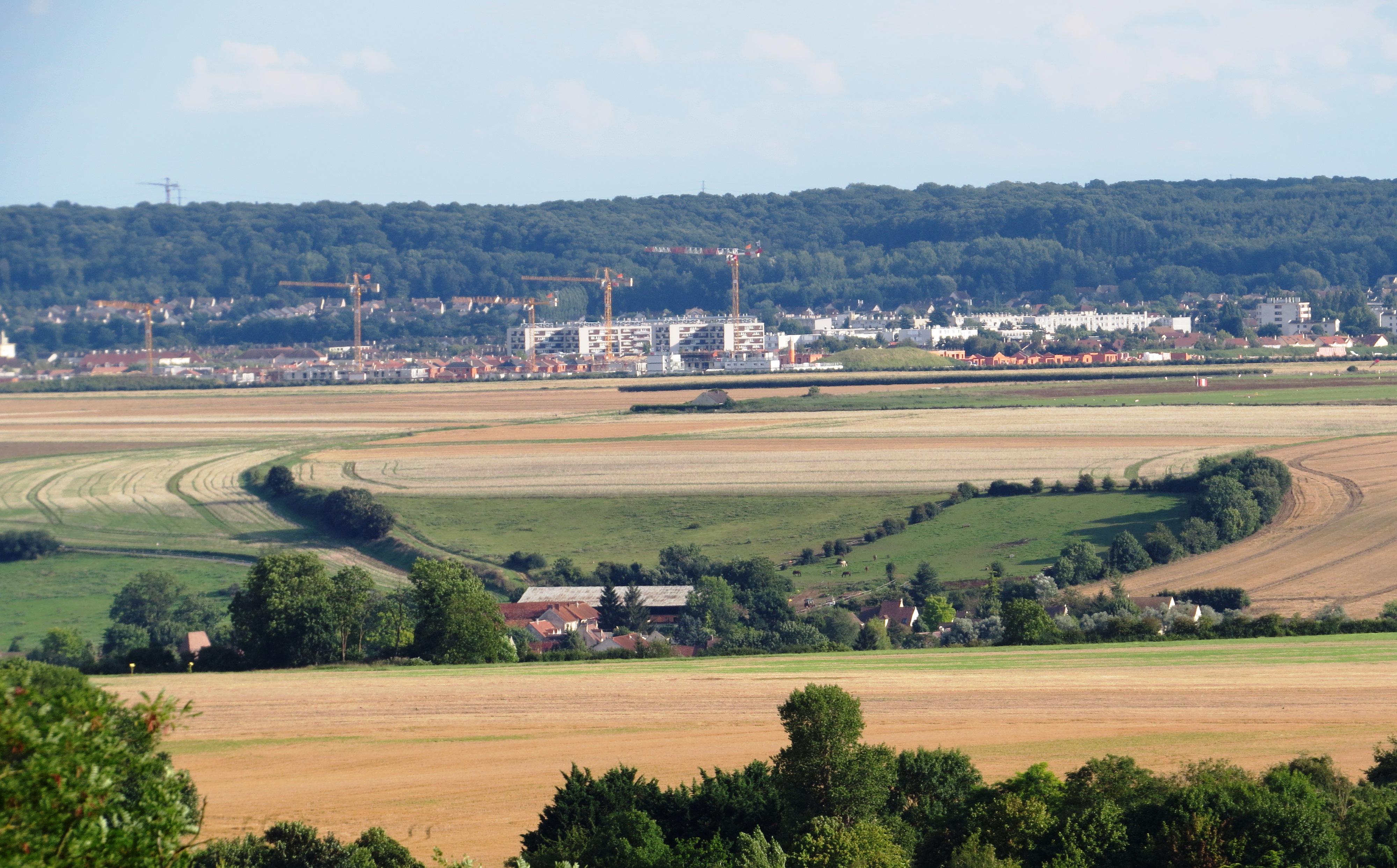 plaine de Versaille -2